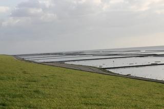 Küstenschutz an der Nordsee 1 - Lahnungen, Flut, Deich, Spazierweg, Nordsee, Urlaub, Erholung, Küstenschutz, Landgewinnung