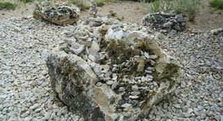 Steine am Ufer - Stein, Steine, Flussufer, Uferbefestigung, Gestein, Oberfläche, Struktur
