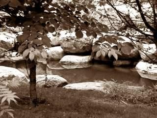 Gartenimpression - Sephia - Entspannung, Ethik, Ruhe, Gelassenheit, besinnen, Meditation, Impuls, Fokussierung, Steine, Wasser, Natur