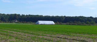 Strohballen - Stroh, Strohballen, Getreide, Feld, Ernte, Erntedank, dreiseitiges Prisma, Oberfläche, Mathematik, Folie