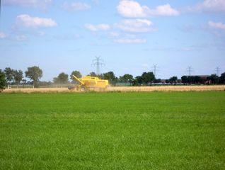 Felderwirtschaft - Feld, Sommer, Getreide, Maschine, Mähdrescher, Feldarbeit, Landwirt, Ernte, Stroh, Körner, Weide