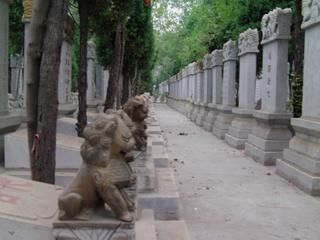 Ruhe - Stimmungsbild, Wege, Tod, Ruhe, Grab, Gräber, Friedhof, Beisetzung, Beerdigung, Stille