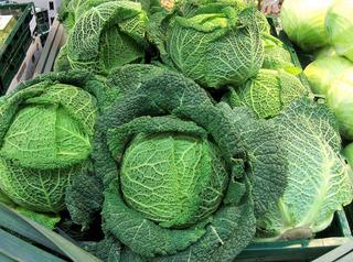 Wirsingkohl - Wirsing, Wirsingkohl, Gemüse, Herbst, Winter, Kohl