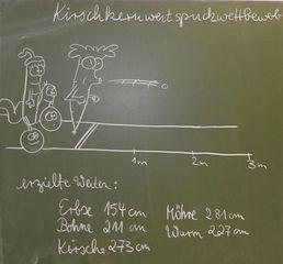 Kirschkernweitspuckwettbewerb- Bild 1 - Mathematik, Runden, Spannweite, Rangliste, Zentralwert