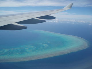 Luftaufnahme Great Barrier Reef - Great Barrier Reef, Korallenriff, Korallen, Australien