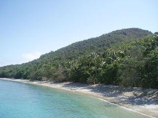 Koralleninsel - Korallen, Insel, Koralleninsel, Great Barrier Reef, Australien