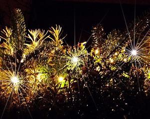 Winterlichter - Licht, leuchten, Lichtschein, strahlen, Kerzenlicht, hell, dunkel, Advent, Weihnachten, weihnachtlich, Nacht, Dunkelheit, warm, Stimmung, besinnlich, Lichter, Hintergrundbild, Wallpaper