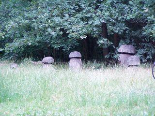 Riesengroße Pilze - Pilze, Wald, Waldrand, Schreibanlass, Kunstobjekt, Spielobjekt, Spielgerät, spielen, Holz