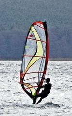 Wassersportart Windsurfen - surfen, Wasser, Wassersport, Sport, Sportler, Wind, Wellen, Segel, Windsurfen, olympisch, olympische Disziplin, Trendsport
