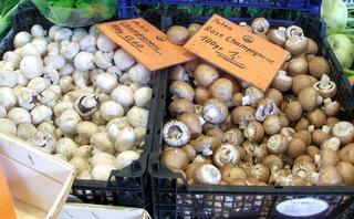 Champignons - Champignons, Gemüse, Egerling, Angerling, Pilz, Speisepilz, Hut, Stiel