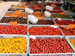Tomatenvielfalt #1 - Tomate, Tomaten, Nachtschattengewächs, Vielfalt, Varianten, Sorten