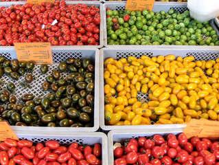 Tomaten #2 - Tomate, Tomaten, Nachtschattengewächs, Vielfalt, Varianten, Sorten