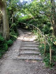 Weg - Weg, Treppe, Waldweg, aufwärts, abwärts, einsam, Meditation, Schreibanlass, wandern, nachdenken, Ruhe, Stufen, grün, Geländer