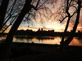 Avignon im Morgenrot - Frankreich, Avignon, Rhône, Papstpalast, Morgenrot, Himmel, Baum