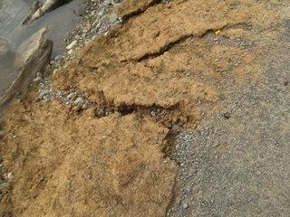 Bodenerosion#3 - Bodenerosion, Umwelt und Naturschutz, Rillenerosion, Rinnsal, Niederschlagswasser