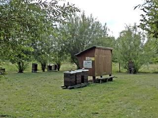 Imkerei - Bienenstand - Bienen, Biene, Schwarm, Imkerei, Werbung, Honig, Wanderimker, Imkerei, Bienenkasten, Bienenwagen, Bienenstock, Bienenstand