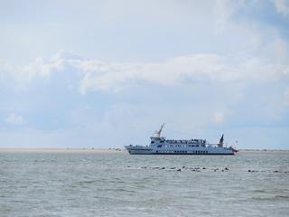 Ausflugsschiff an Seehundbank - Meer, Seehund, ausruhen, beobachten, Ausflug, Fähre, Sandbank, Seehundbank, Tourismus, Schifffahrt, Schiff