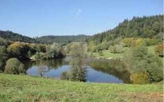 Herbststimmung am See - See, Herbst, Ruhe, Erholung, Wandern, Spiegelung, Bäume, Stillgewässer