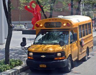 Schulbus USA - Schulbus, schoolbus, Transport, öffentliches Verkehrswesen, öffentlicher Nahverkehr, Schüler, Schülerbeförderung, gelb, yellow, Personenbeförderung, Fahrzeug, Bus, Schule, USA