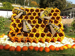 Kürbisdekoration #5 - Kürbis, Kürbisdekoration, Herbst, Bienenkönigin