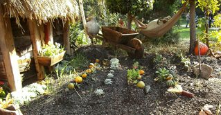 Hobbits aus Kürbissen#6 - Kürbis, Kürbisdekoration, Herbst, Garten, Anbau, Gemüse, Kürbis