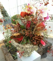 Herbstgesteck #1 - Herbstgesteck, Floristik, Dekoration, floritisches Schmuckteil, Blumengesteck, Florist
