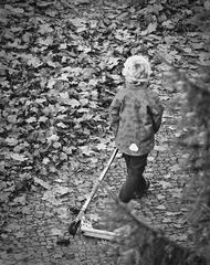 Herbstspaziergang -sw - herbstlich, spazieren, Kind, Herbst, bunt, Freizeit, spielen, beenden, Ende, Blätter, Laub, Blatt, Weg, gehen, ziehen, Spaziergang, Mensch, allein, Roller
