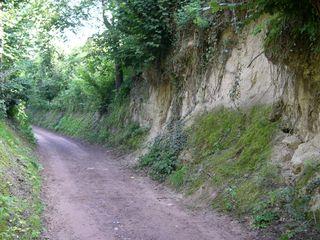 Lösshohlweg - Löss, Hohlweg, Lösshohlweg, Kaiserstuhl, äolisches Sediment, Weg, Verwitterung
