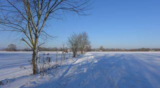 Winterlandschaft - Winter, Schnee, Landschaft, Weg, schneebedeckt, weiss, kalt, sonnig, Spuren, eisig, Baum, Winterlandschaft, Wintersonne, Feld