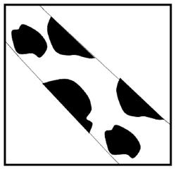 Droodle #2 Giraffe geht am Fenster vorbei - Drudel, Droodle, Zeichnung, Bildgeschichte, Rätsel, Rätselbild, Schreibanlass, Gesprächsanlass, Fantasie