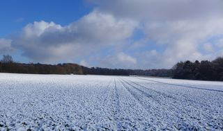 Landschaft im Schnee #2 - Winterlandschaft, Winter, Schnee, kahle Bäume, Sonne, Schneelandschaft, Kälte, Einsamkeit, Ruhe, Stille, Schreibanlass, Meditation, Fluchtpunkt, Perspektive, Wolken