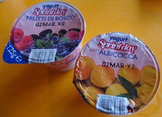 Joghurt aus Italien - Joghurt, yogurt, frutti, bosci, albicocca