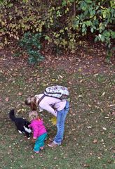 Mensch und Tier - Haustier, Katze, Mensch, Familie, Freizeit, spielen, streicheln, Haustier, Liebling, Pflege, artgerechte Haltung von Tieren, Spiel, Natur, Umwelt, Tierhaltung, pflegen, Tier, Schreibanlass, Freizeit, Freizeitgestaltung, Familie, Freund, Kind, lernen