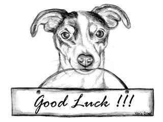 Good Luck! - Jack Russell Terrier, Hund, Haustier, Wünsche, Englisch