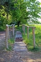 Barfußgang im Freien - Fuß, spüren, Füße, Sinne, Wald, fühlen, Boden, Beine, Zehen, barfuß, Erlebnis, Naturerlebnis, Wahrnehmung, wahrnehmen, Fußgymnastik, Fußpflege