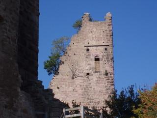 Alsace - Elsass, Burg, Turm, Ruine, alt, Frankreich, verfallen, Mauern, zerstört