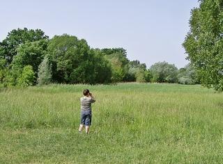 Naturbeobachtung #2 - sehen, beobachten, schauen, Natur, Naturbeobachtung, Sachunterricht, Forscher, forschen, erforschen, Kind, klein, neugierig, wissbegierig, Wissenserwerb, Sommer, Wiese