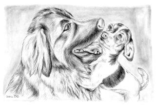 Gómez und Amy - Leonberger, Jack Russell Terrier, Hund, Hunde, Haustier, Tier, Freundschaft, Sozialisation, Anlaut H, Illustration