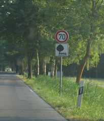 Verkehrszeichen - Straßenschild, Verkehrszeichen, Warnhinweis, Verkehrserziehung, Verkehrsschild, Hinweisschild, Warnschild, Verkehr, Straßenverkehr, Fahrzeug, Sicherheit
