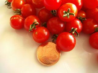 Johannisbeertomate #2 - Tomate, Paradeiser, Nachtschattengewächs, Frucht, Gemüse, rot