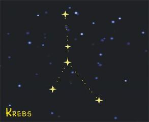 Sternbild Krebs (Cancer) – Tierkreiszeichen Krebs - Astronomie, Astrologie, Himmel, Sterne, Sternzeichen, Tierkreiszeichen, Nacht, Sternbilder, Krebs.