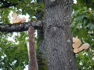 Eichhörnchen im Baum - Objektkunst, Baum, Holz, Eichhörnchen