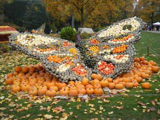 Kürbisdekoration #11 - Kürbis, Kürbisdekoration, Herbst, Schmetterling