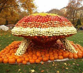 Kürbisdekoration #6 - Kürbis, Kürbisdekoration, Herbst, UFO
