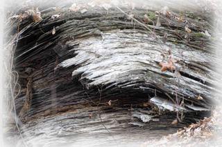Schwarzer Juraschiefer - Schwäbische Alb, Schwarzer Juraschiefer, 180 Mio Jahre alt, Erdgeschichte, Gesteinsaufbau und Oberflächenformen, Geographie, NWT, NWA