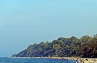 Küstenschutzwald an der Ostseeküste - Küste, Küstenabschnitt, Ostsee, Ostseestrand, Küstenschutz, Wasser, Gewässer, See, Meer, abtragen, Wellen, Wellenbrecher, schützen, Minderung, Sand, Strand, Wald, Kliff, Erosion, erhalten