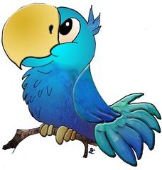 Papagei - Papagei, Vogel, Regenwald, Tier, blau, türkis, Schnabel, Feder, Gefieder, Dschungel, Anlaut P, Wörter mit ei