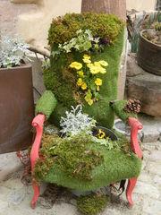 Stuhl - Stuhl, Dekoration, Pflanzen, Moos