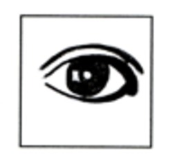 Auge - Auge, Iris, Sinne, braun, sehen, Lid