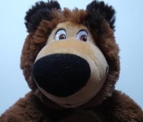 Bär_Gesicht_frontal - Bär, Trickfilm, Bär Mascha und der Bär, Kuscheltier
